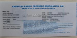 The front of the leg with the information of the breeder, rabbit and the show the leg was obtained
