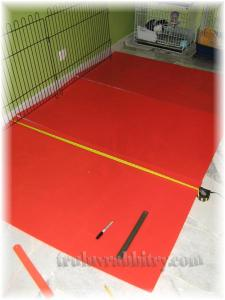 Measuring to fit the puppy playpen