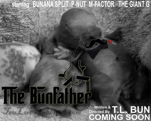 TheBunfatherBanner