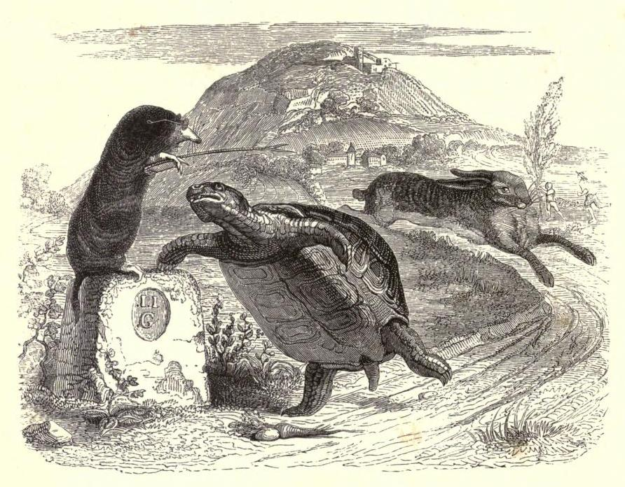 A 19th-century illustration of La Fontaine's Fables by Jean Grandville (via wikipedia.org)